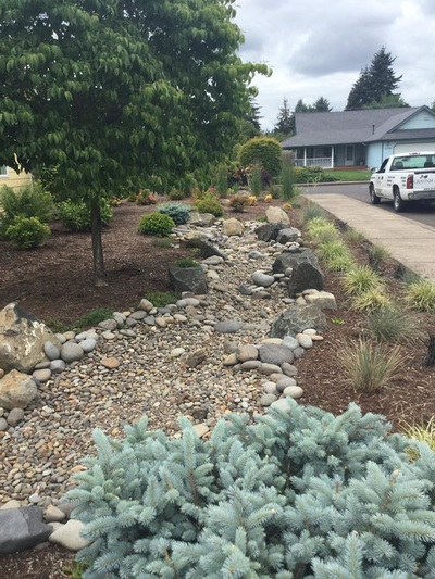 Dry Creek Beds Design And Installation Eugene Landscape