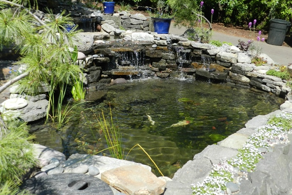 waterfall design, pond design, waterfall installation, pond installation, natural rock ponds, koi pond